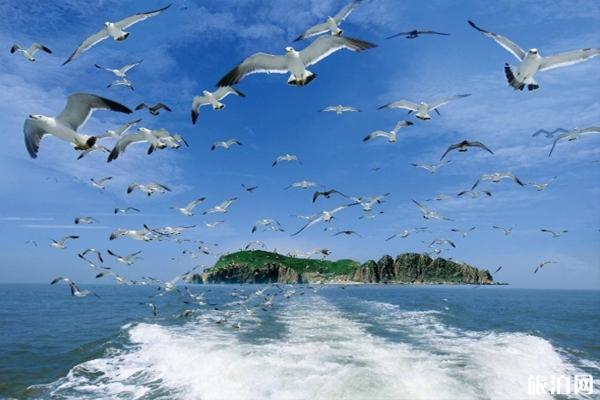 海驴岛怎么去-好玩吗 威海海驴岛门票多少钱