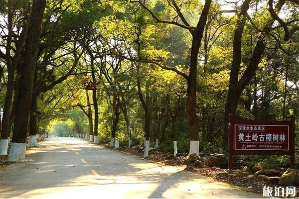 廣東省道S244起止路線 沿途美景有哪些