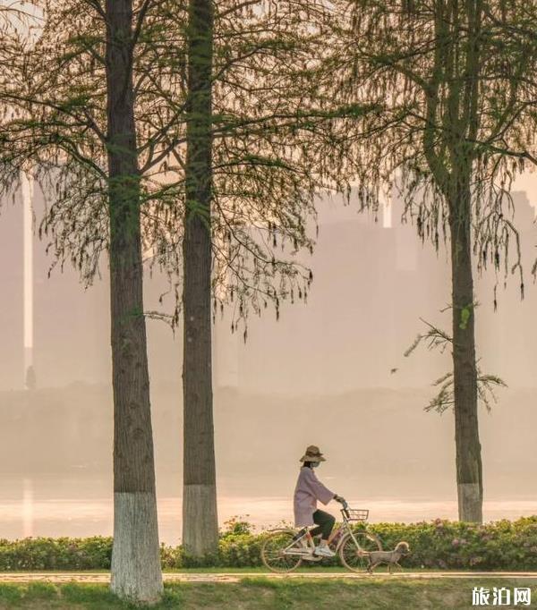 武漢東湖旅游攻略2020最新版
