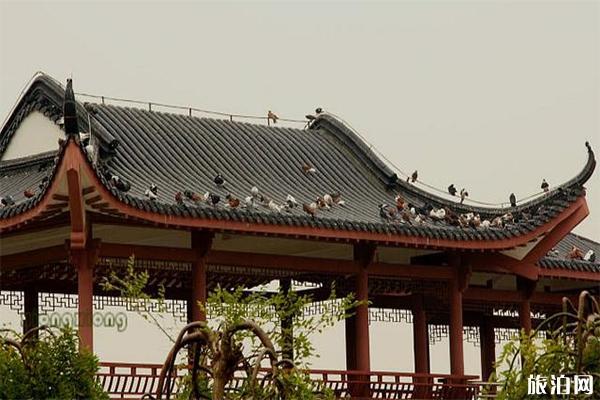 南昌天香园附近好吃的餐厅