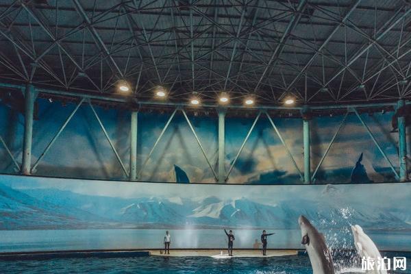 上海長風海洋世界門票多少錢一張 上海長風海洋世界游玩攻略