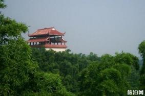 2020桃花江竹海旅游區旅游攻略 竹海旅游區門票交通天氣景點介紹