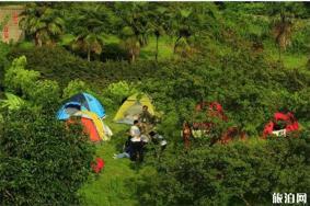 重慶哪些景區可以露營匯總