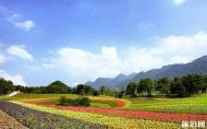 重慶巫溪紅池壩風景區門票 重慶巫溪紅池壩風景區游玩攻略