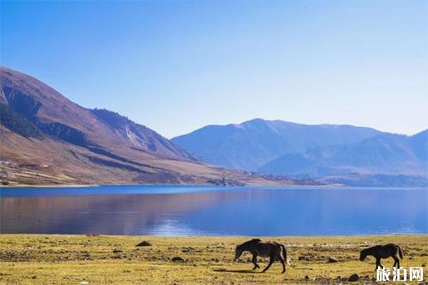 治勒湖介紹 治勒湖自駕線路推薦-圖片