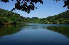2020隨州琵琶湖風景區門票交通及景點介紹