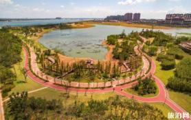 南京九龍湖公園可以燒烤嗎