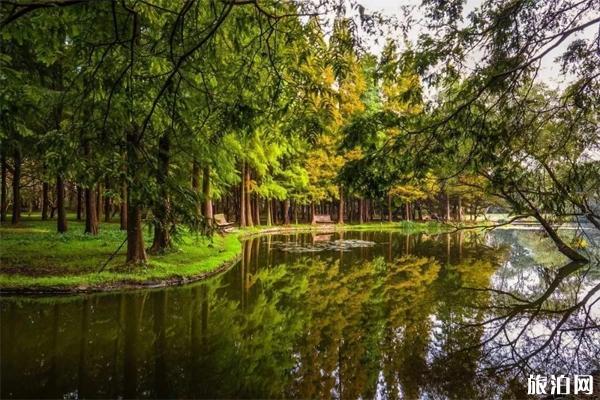 2020上海黃興公園預約入口和旅游攻略