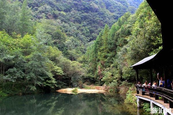 钱江源国家森林公园游玩攻略 钱江源国家森林公园门票价格