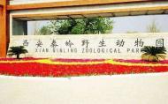 秦嶺野生動物園門票多少 有什么景點