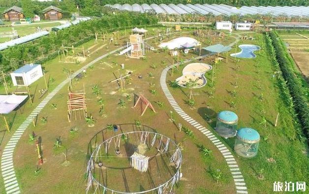 麻涌古梅园生态农场有什么好玩的