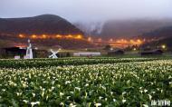 台北阳明山国家森林公园攻略 台北阳明山国家森林公园在哪里
