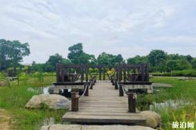 2020芜湖和平生态公园游玩攻略 和平生态公园地址景点介绍