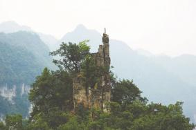 2020贵州油杉河风景区景点介绍 油杉河风景区门票交通旅游攻略