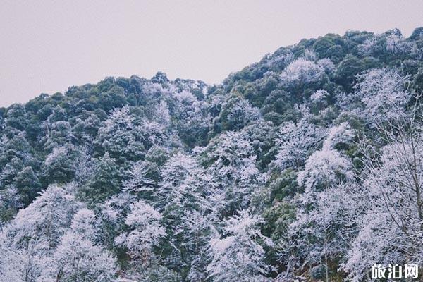 武冈云山国家森林公园好玩吗 武冈云山国家森林公园门票多少钱
