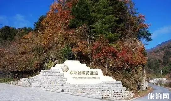 宁陕旅游景点及旅游攻略