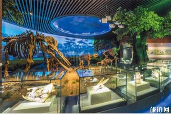 2020安徽省地質博物館游玩攻略 安徽省地質博物館預約開放時間介紹