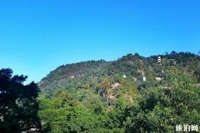溫州仙巖風景區好玩嗎 溫州仙巖風景區線路推薦