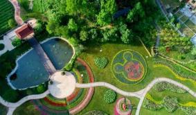 2020英山四季花海景区六一儿童节活动
