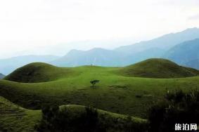 广东有哪些草原 广东有草原吗可以骑马