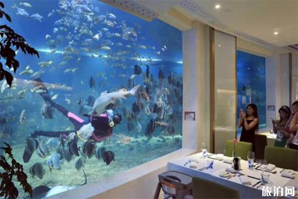 亚龙湾海底世界攻略 亚龙湾海底世界好玩吗游玩项目有哪些