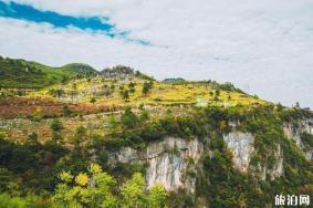 2020怀化黄岩生态旅游区旅游攻略 怀化黄岩生态旅游区门票交通天气景点介绍