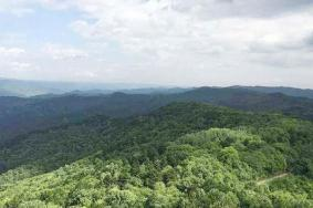 2020慶陽調令關森林公園景點介紹 調令關森林公園門票交通旅游攻略