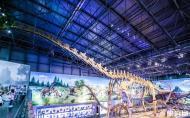 中國西峽恐龍遺跡園怎么樣 中國西峽恐龍遺跡園攻略