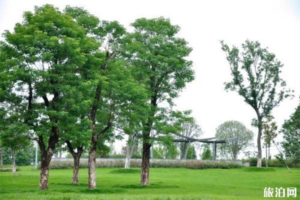 国内哪些园博园免费开放 哪些价格高-哪些低