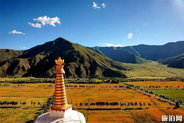 西藏寺庙开始恢复了吗 什么时候开放2020