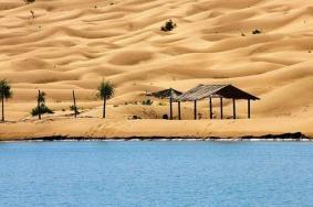 2020乌海金沙湾生态旅游区门票 金沙湾生态旅游区交通旅游攻略