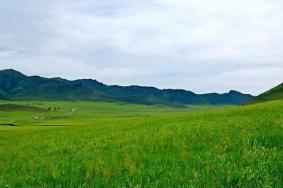 2020通辽扎鲁特山地草原旅游攻略 扎鲁特山地草原门票交通景点介绍