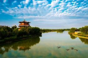 2020马踏湖湿地公园门票地址及主要景点