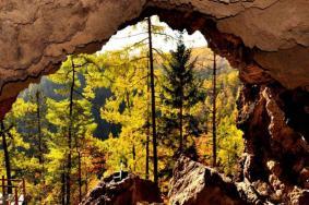 2020牡丹江火山口森林公园门票 火山口森林公园旅游攻略