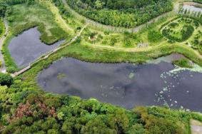 2020黑龙江塔河固奇谷国家湿地公园介绍 塔河固奇谷国家湿地公园旅游攻略