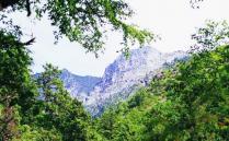 2020陇南白水江国家级自然保护区门票 白水江国家级自然保护区交通旅游攻略