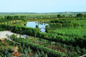 2020哈爾濱白魚泡濕地公園門票 白魚泡濕地公園開放時間景點介紹