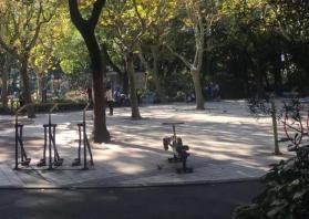 上海波陽公園在哪里 上海波陽公園地址在哪個區