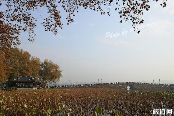 2020杭州西湖一日游 景点介绍+路线推荐