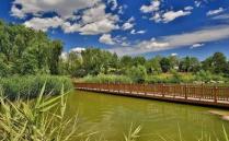 2020南海大濕地公園門票地址交通及游玩攻略