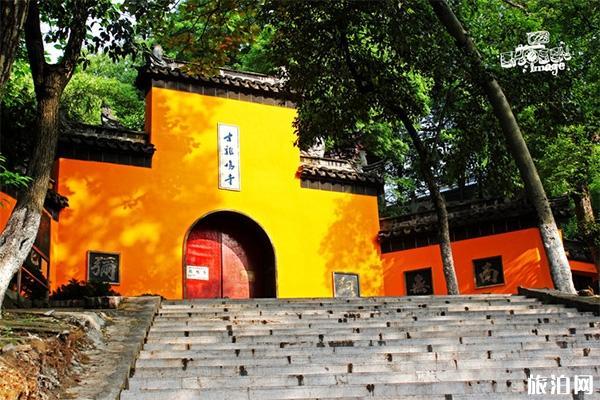 2020南京五大必游景點