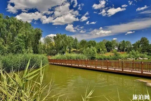 2020南海大湿地公园门票地址交通及游玩攻略