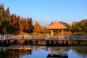 2020内蒙古恩格贝生态旅游区门票 恩格贝生态旅游区开放时间旅游攻略