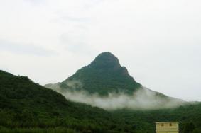 2020黑龙江帽儿山国家森林公园旅游攻略 帽儿山国家森林公园门票交通天气