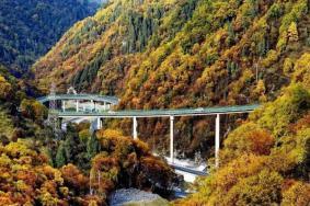 青海網紅公路最美公路在哪 扎碾公路自駕游路線圖