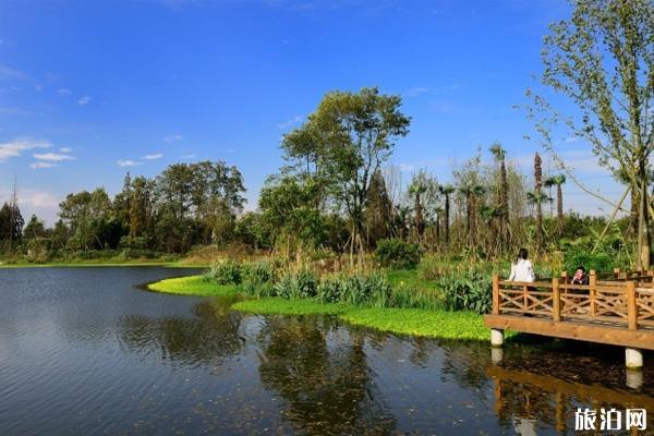 成都桤木河湿地公园在哪里 桤木河湿地公园门票交通指南及景区介绍