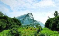 重庆南山植物园门票多少钱-最佳赏花期及游玩攻略