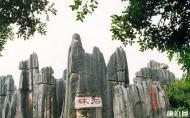 昆明石林风景区介绍 昆明石林一日游的最佳线路推荐
