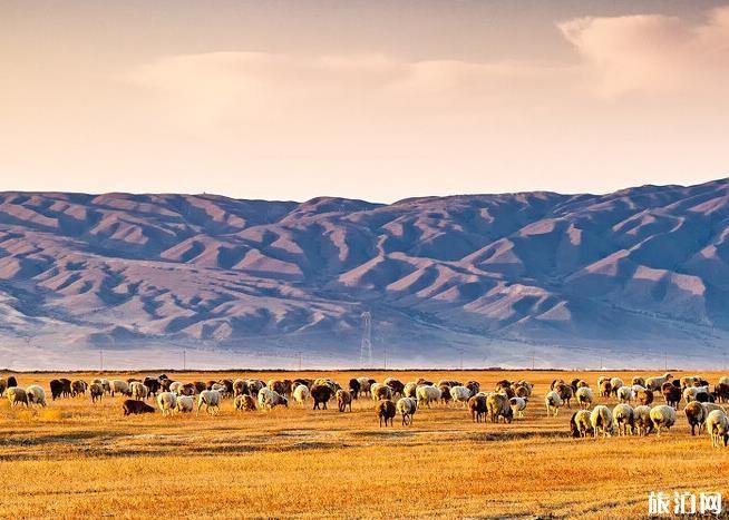 2020年国庆节南疆旅游路线推荐