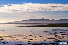 2020菊花岛旅游攻略 菊花岛开放时间及地址及天气